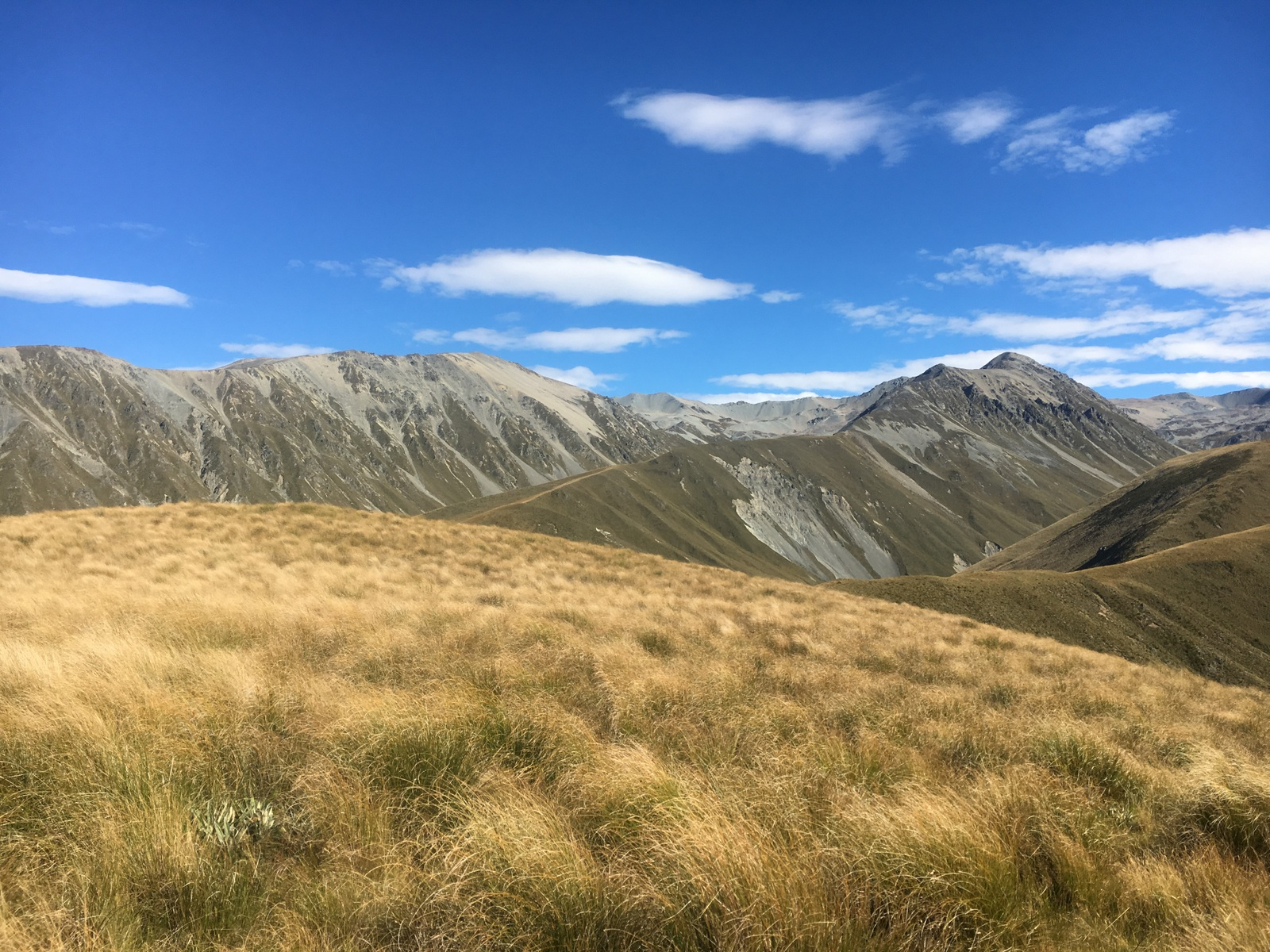 Classic Hearths:<br>Tussock Country