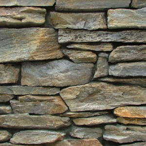 Mountain Shale - Tarras Sample